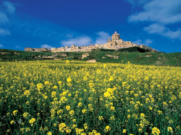 Malta Takes on Environment with EPC on Sale of Property